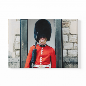 Daz Prints wall canvas Queen's guard